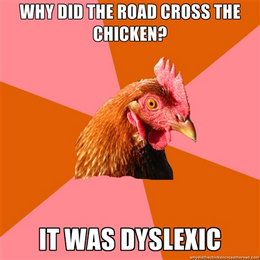 chicken meme - why did the road cross the chicken?